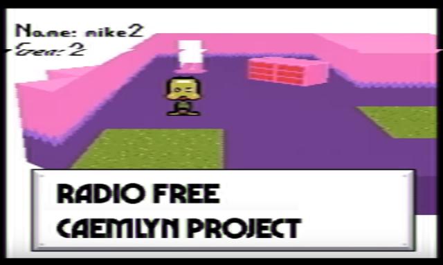 radiofreecaemlynproject_petscopmania